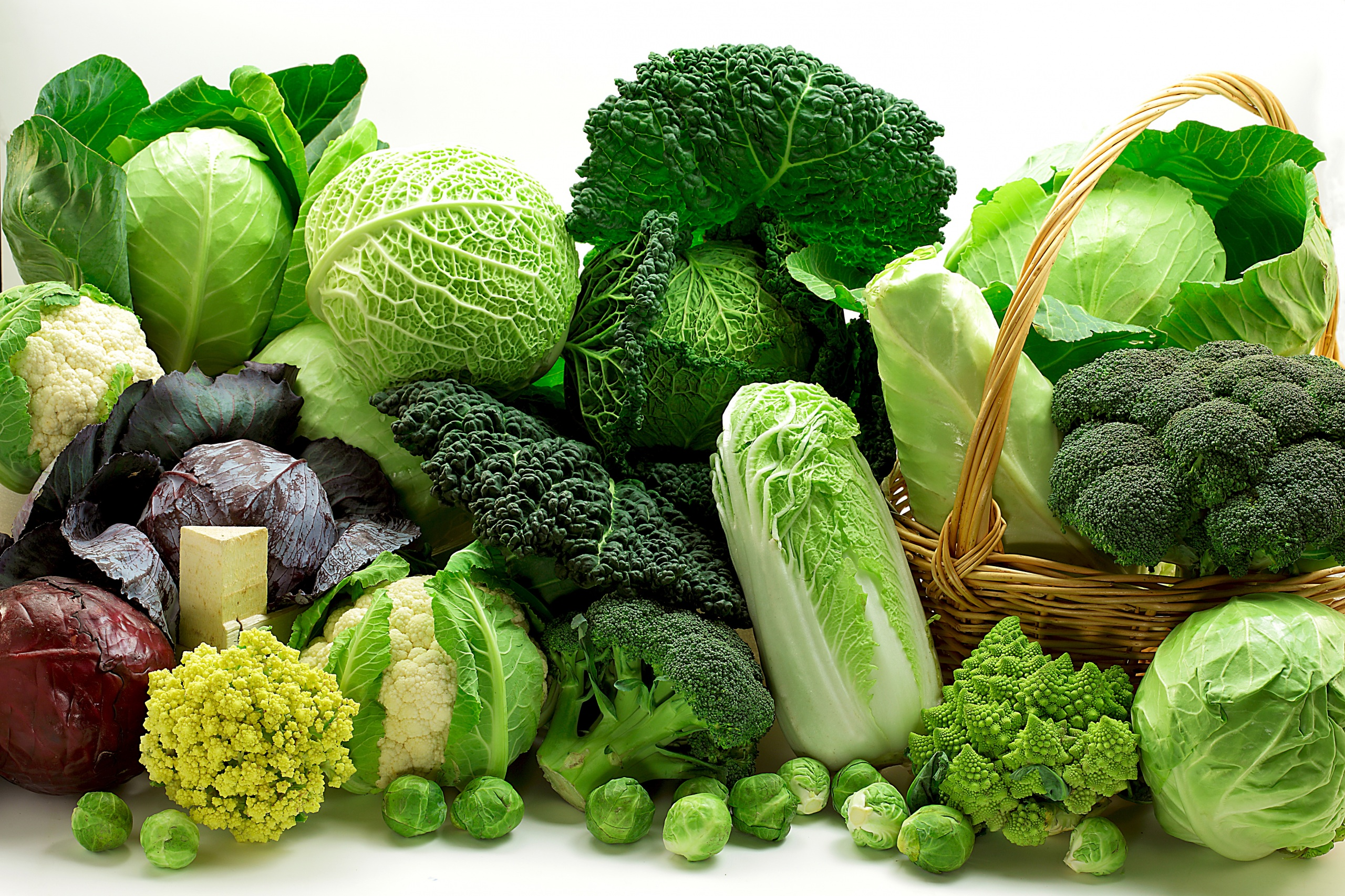Vegetables_Cabbage_Many_422713