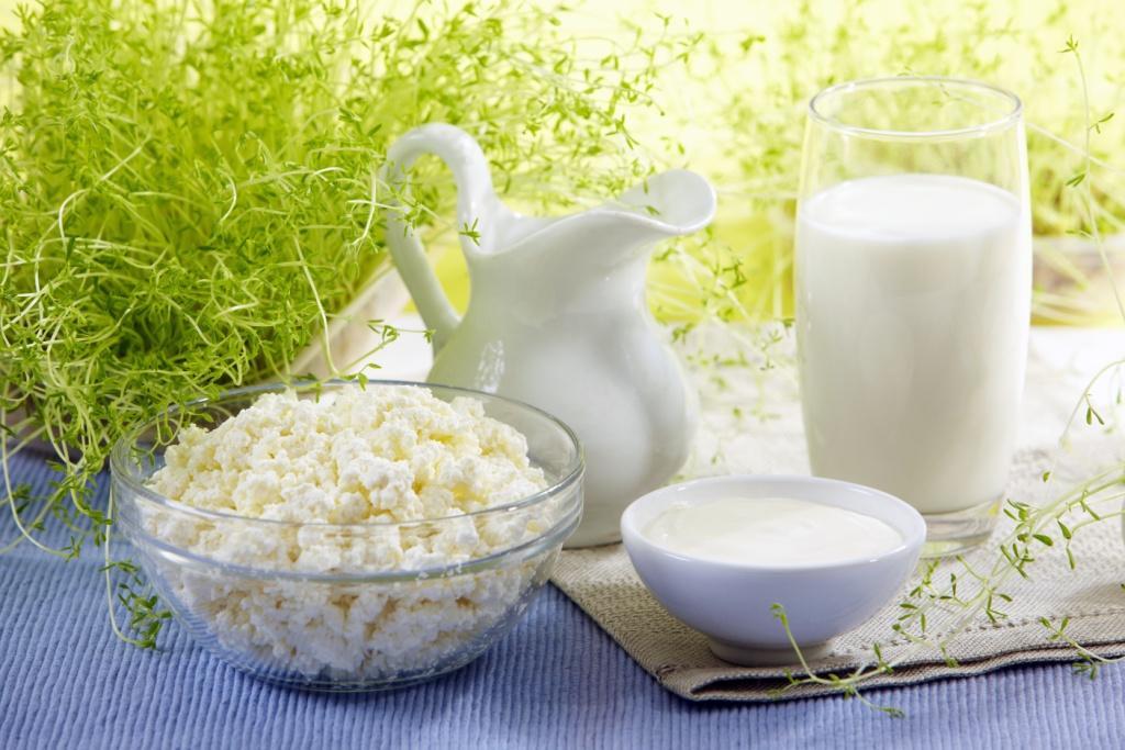 молочные-продукты