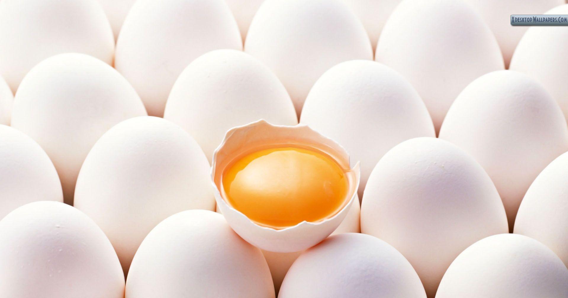 eggss1