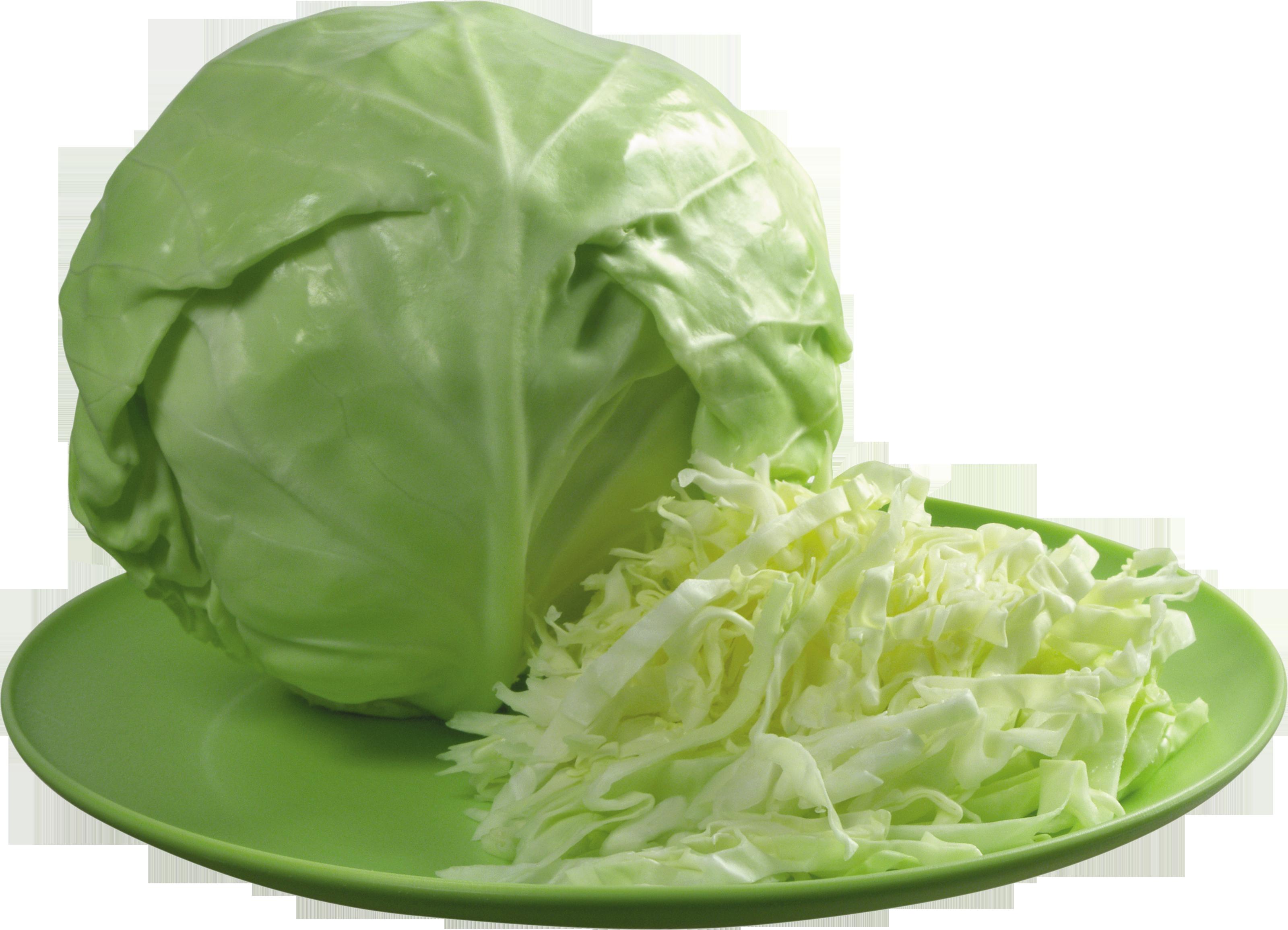 dieta-dlya-ovolakto-vegetariantsev